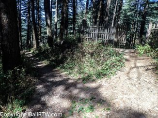 Wild Strawberry Trail, looking back at gate to Wildflower Hall