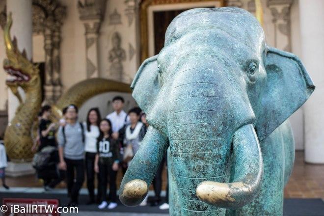Green Elephant 2