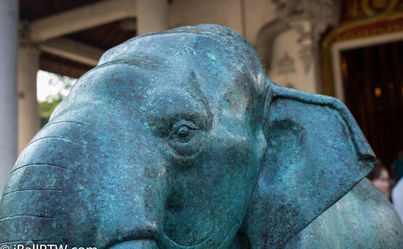Vertigris Elephant