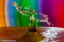 iBallRTW-Water Drop Collisions-9