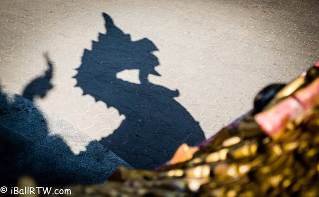 Shadow of a Naga and Makara