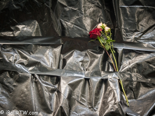 Roses on Statue of General Robert E. Lee