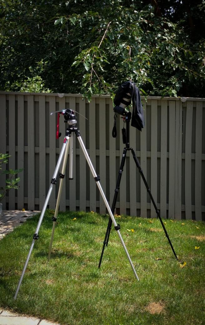 Eclipse Photography Setup