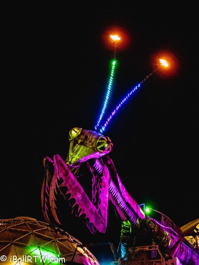 Fire-Breathing Praying Mantis