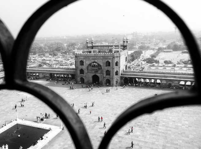 View from a Tower of Jama Masjid